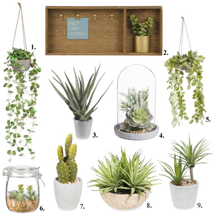 Les plantes.png