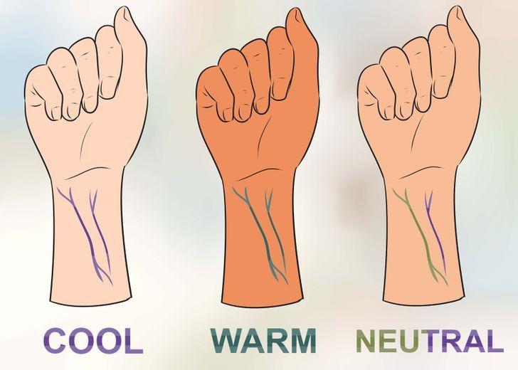Comment bien choisir son fond de teint en fonction des veines